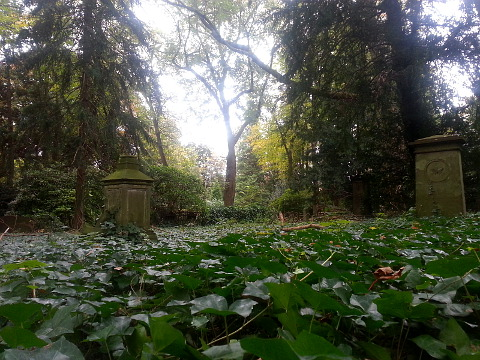 alter westfriedhof unna