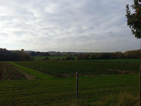 massener Heide