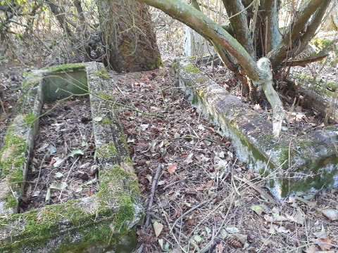 Cmentarz ewangelicki w Chrośnej