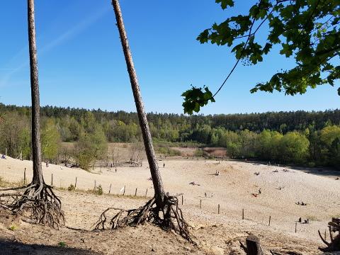 Sandgrube im Jagen 86