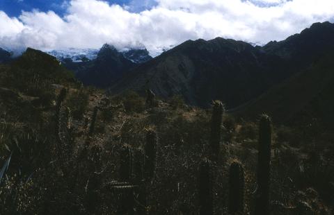 Vista panorámica andina