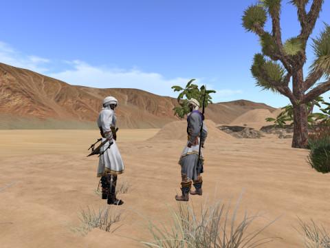 tahari warriors