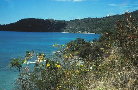 Grand Mal Bay