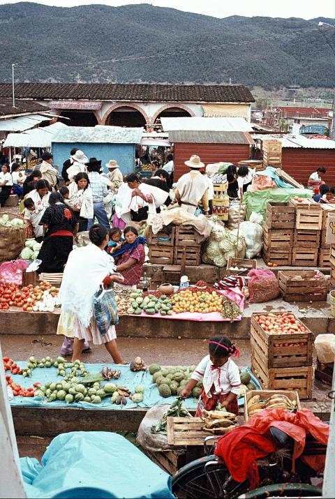 market cristobal