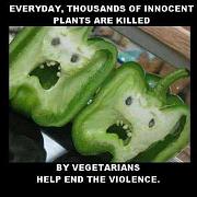 stop vegetarian violence