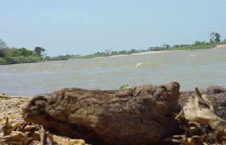Rio Apure