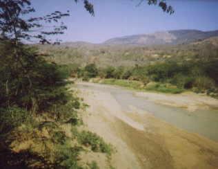 Rio Tocuyo